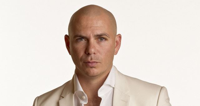 Pitbull Press Photo Hitportal